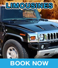 Limousines Travel