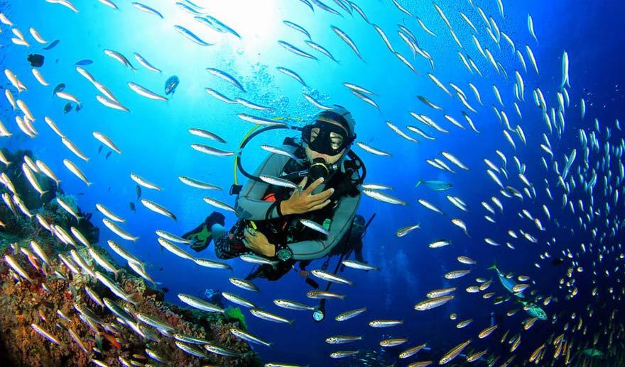Scuba-diving-at-Fiji-Schoolies
