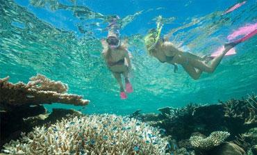 Snorkelling-at-Vanuatu-Schoolies